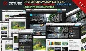 de tube wordpress video theme