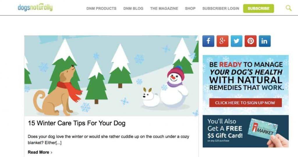 dogs-naturally-magazine