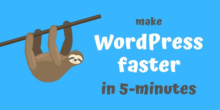make-wordpress-faster